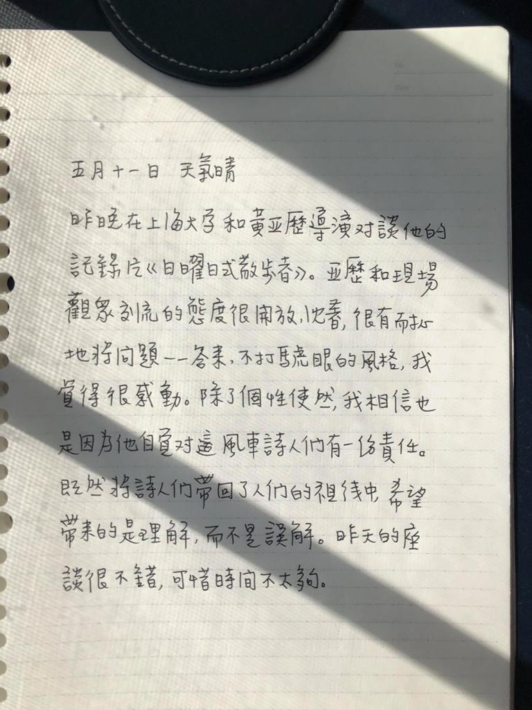 張惠菁, 手寫日記