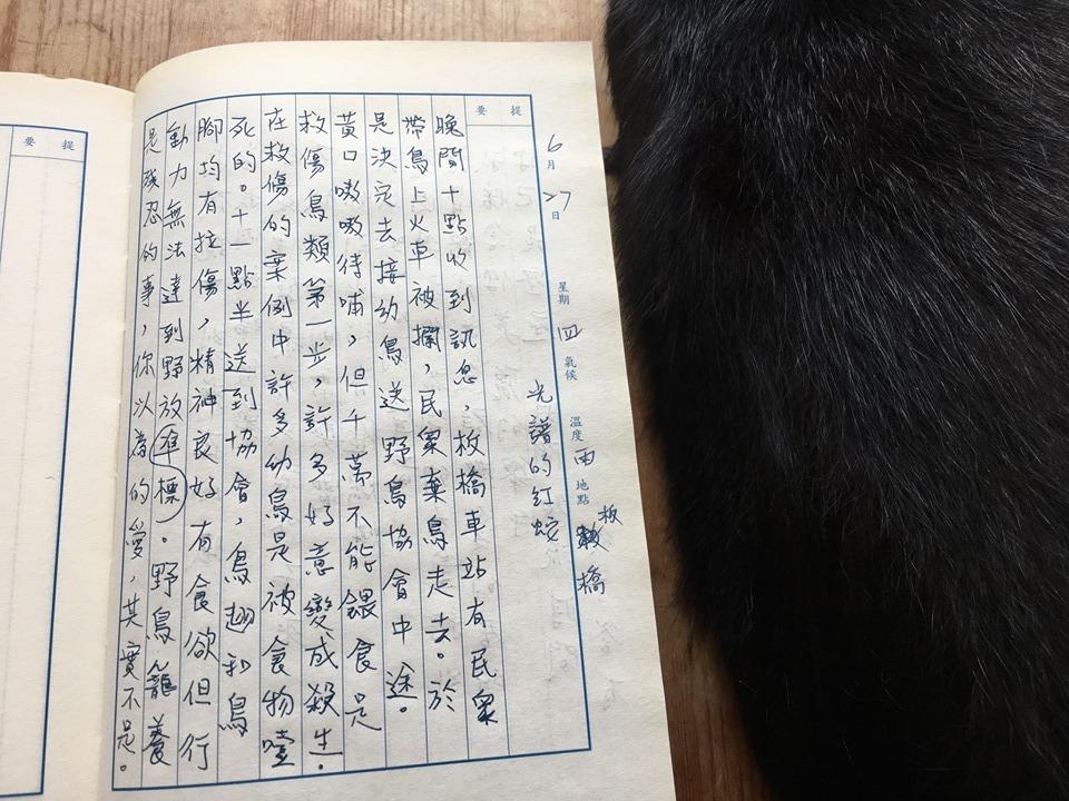 手寫日記|六月|騷夏|6/27