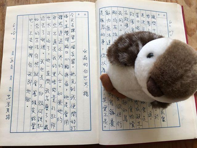 手寫日記|六月|騷夏|6/28