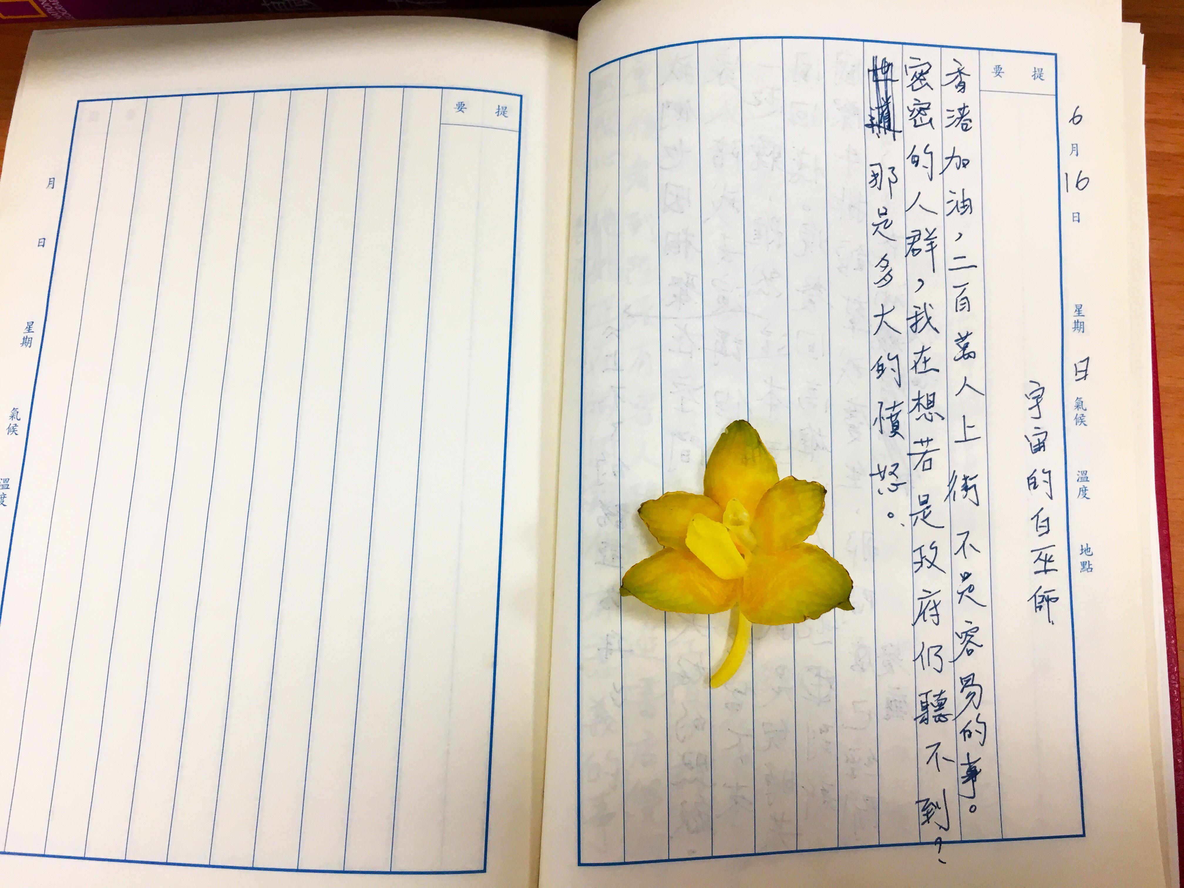 手寫日記|六月|騷夏|6/16